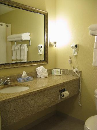 Freeport Comfort Suites Bath