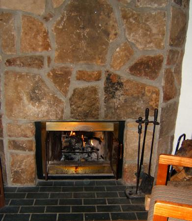 LeConte View Motor Lodge: Fireplace