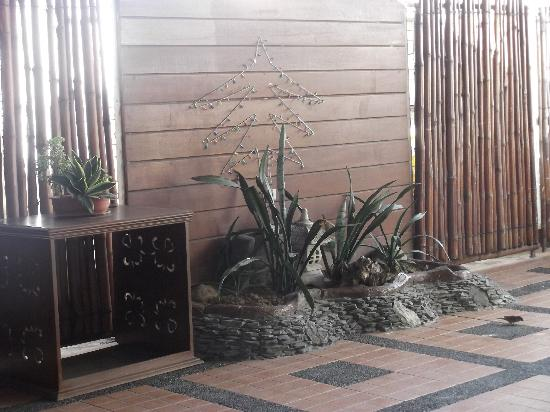 Apple Tree Suites Cebu: still at the Tree Tops (inside)