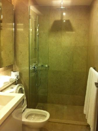 Damas Suites and Residences: The Studio unit does not have a bathtub but the rain shower was heaven!