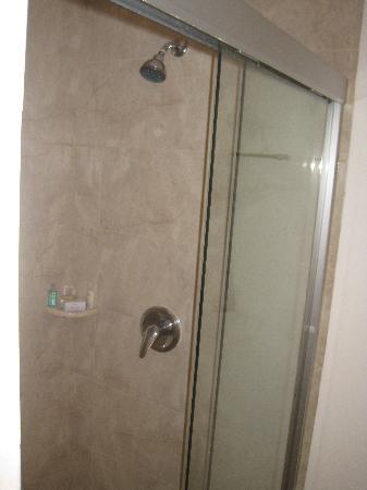 Wyndham Garden Irapuato: bañera