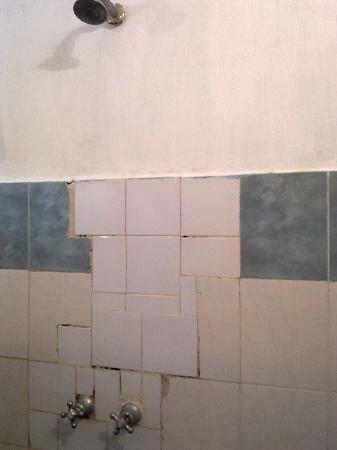 Hotel African Pearl : Bathroom tile art