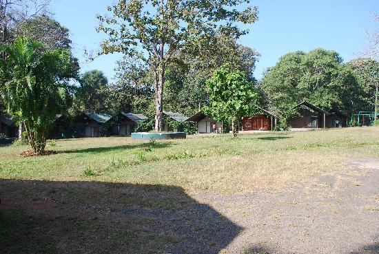 Kulgi Nature Camp: Tents !