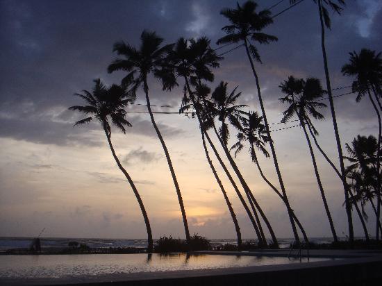 Saffron Beach Hotel Wadduwa: Pool und Meer gehen fast ineinander über