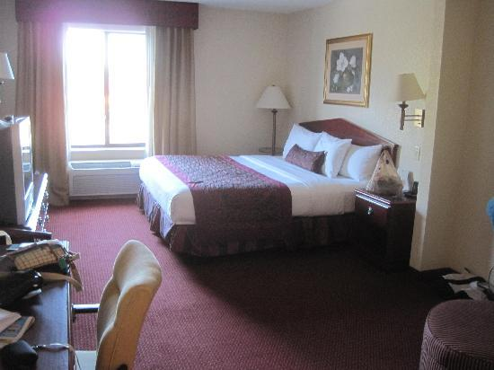 Wingate by Wyndham St Augustine: King size room