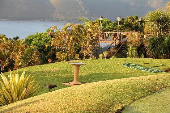 Villa Mulligan: Ausblick vom und im Garten