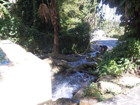 Guadeloupe : source près de la route