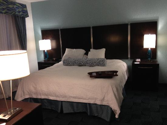 Hampton Inn & Suites Dallas / Lewisville - Vista Ridge Mall照片