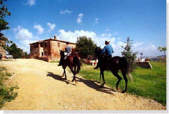 Agriturismo Podere Il Moro : Passeggiata a cavallo