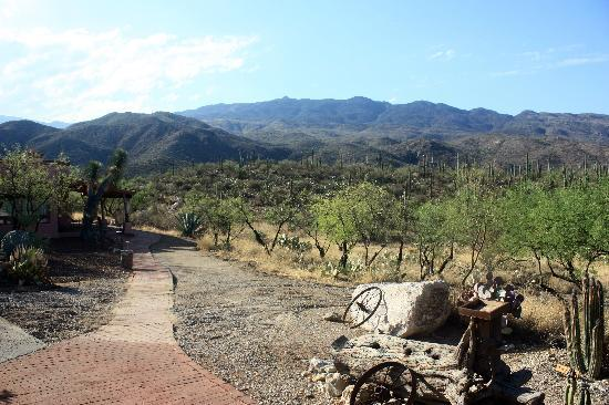 Tanque Verde Ranch: View from our casita.