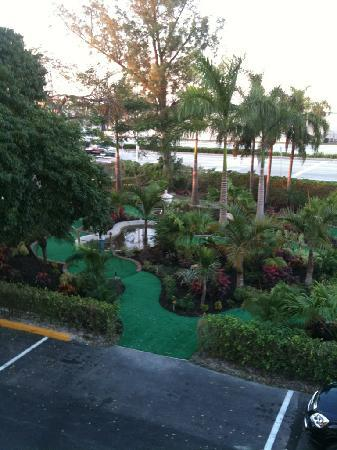Universal Palms Hotel: Antonio