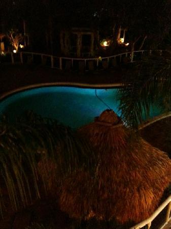 Universal Palms Hotel: Pool at night