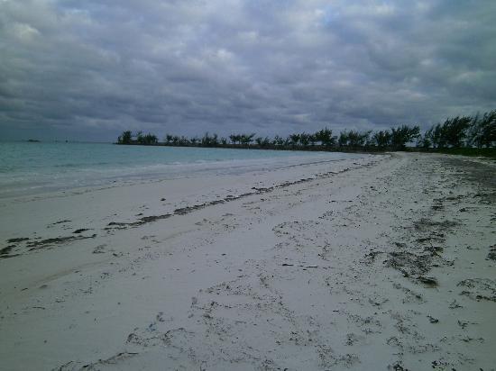 Andros Beach Club: Beach looking southeast towards jetty.