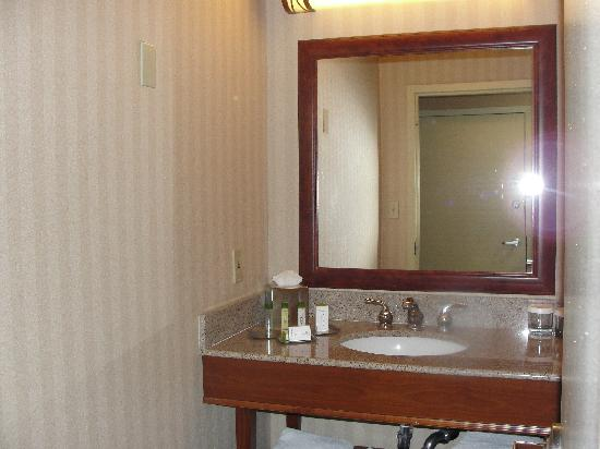 Doubletree Inn at The Colonnade: Vanity.