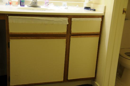 Sonesta ES Suites Malvern: Bathroom vanity