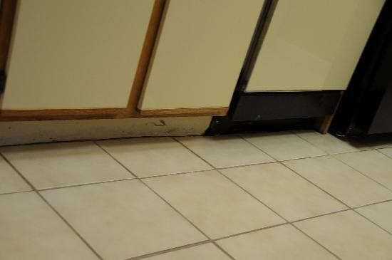 Sonesta ES Suites Malvern: Kitchen baseboard