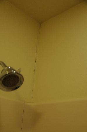Sonesta ES Suites Malvern: cracks in the shower