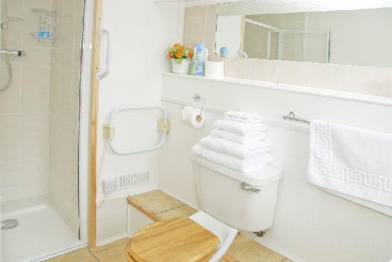 Beech Hill House: The family room has an en-suite shower room with walk-in shower.