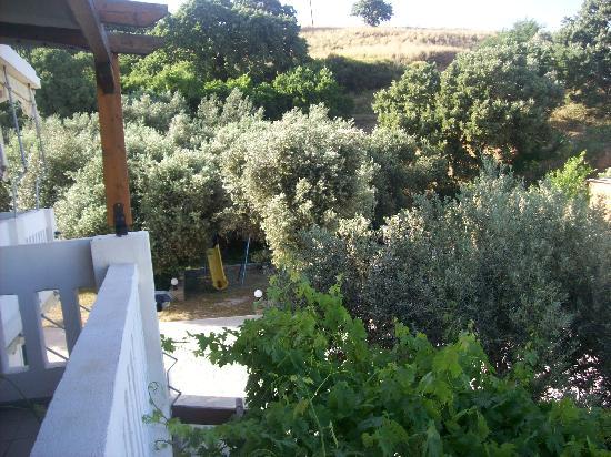 Vassiliki Studios & Family Apartments: External view from balcony 2