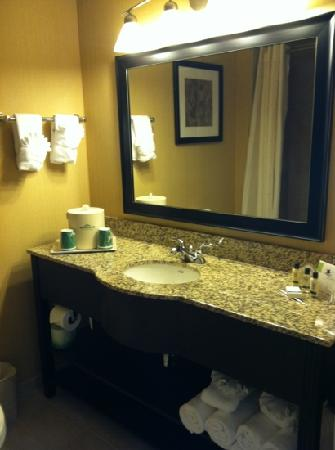 Wingate by Wyndham State Arena Raleigh/Cary: upgraded king bathroom