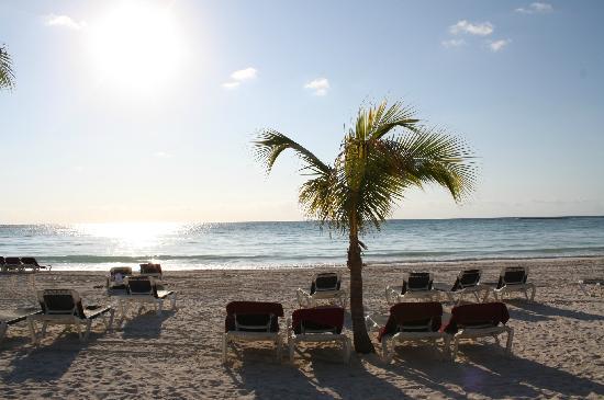 Barcelo Maya Caribe: Strand am Morgen