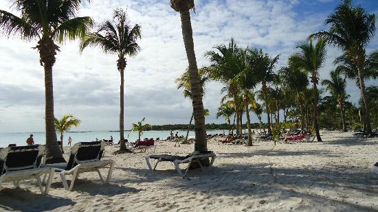 Barcelo Maya Caribe: Strand