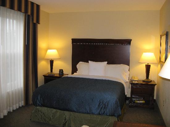 Homewood Suites by Hilton Manchester/Airport: Manchester Homewood Queen Bed