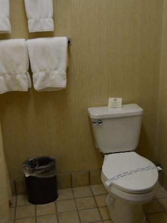 Best Western Plus GranTree Inn: Clean bathroom