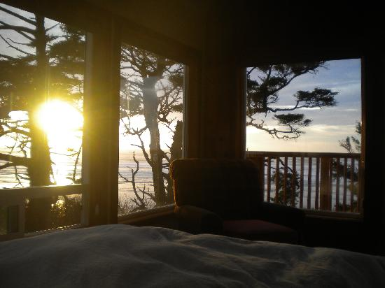 Copalis Beach, WA: View from the bed