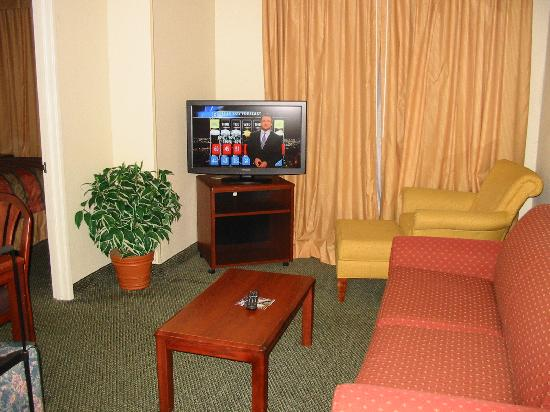 Homewood Suites Dallas - DFW Airport N - Grapevine: Living room area