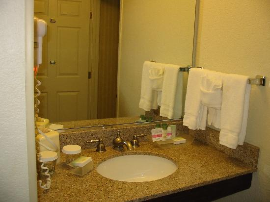 Homewood Suites Dallas - DFW Airport N - Grapevine: Sink area