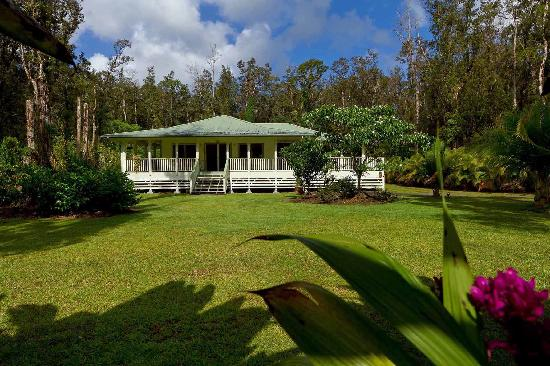 The Ohia House: Ohia House, your private oasis