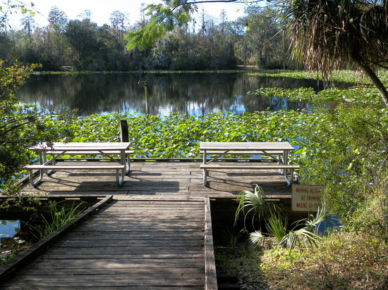 Al Lopez Park Tampa All You Need To Know Before You Go