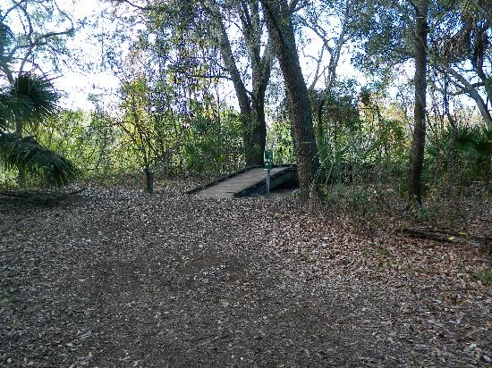 Al Lopez Park : Boardwalk around lake