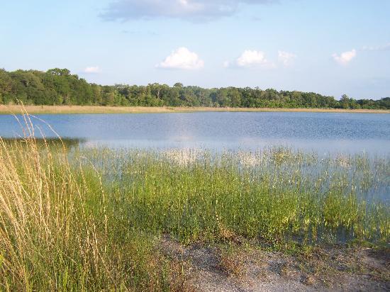 Lake Rogers Park : Lake View