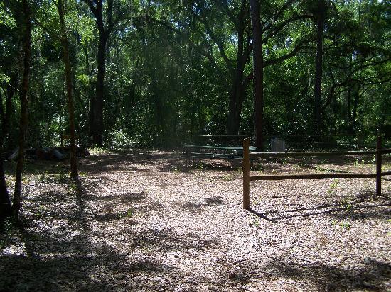Lake Rogers Park : Picnic area