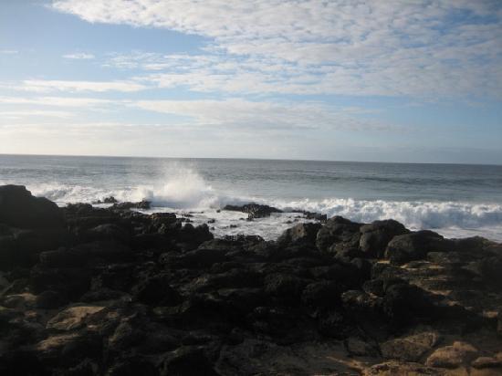 مولوكي فاكيشن بروبرتيز - كه ناني كاي: ocean waves