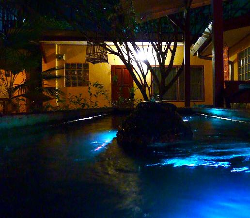 Cool Guesthouse: The fountain