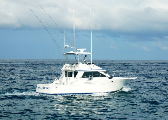 Kona concept sportfishing kailua kona all you need to for Kona fishing charters