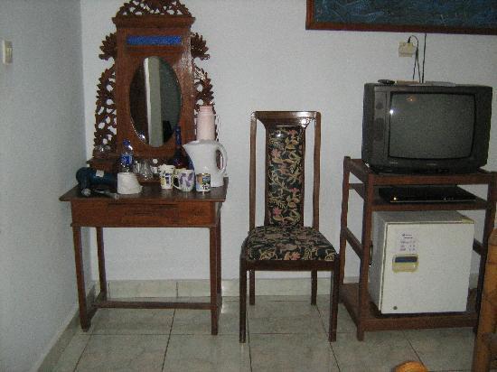 Sayang Maha Mertha: TV and fridge area of Room 201