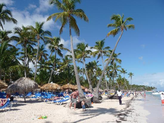 Dreams Palm Beach Punta Cana La Plage De L Hotel