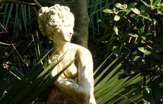 Classic Hotel: Garden