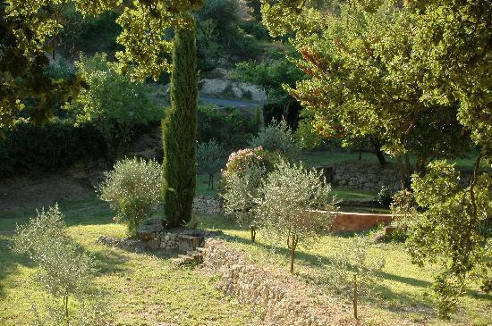 La Tuilière en Luberon : Une vue du jardin