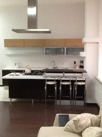 Ekaterina: full kitchen