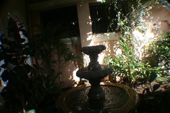 Casa San Francisco : Fountain