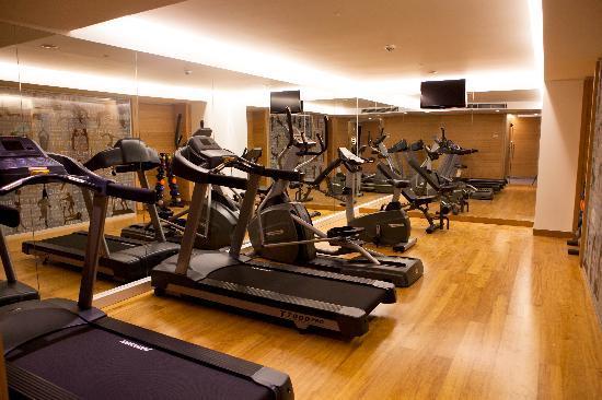 Innova Sultanahmet Istanbul: Fitness