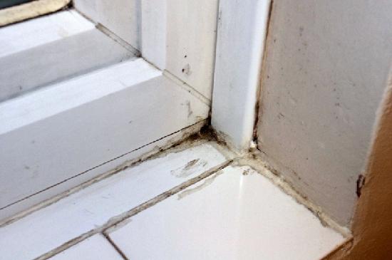 Stockwood Hotel: Window Sill