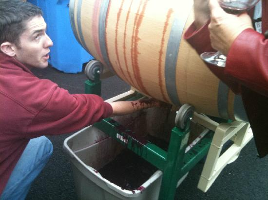 Barrel Wine Tours: Learning about making wine from the experts