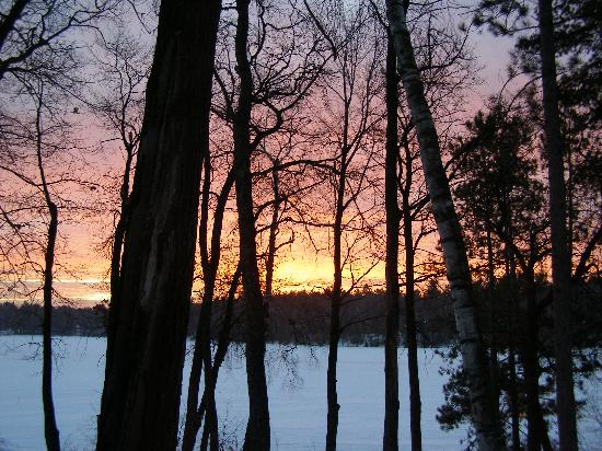Hiller's Pine Haven: sunrise from the cottage