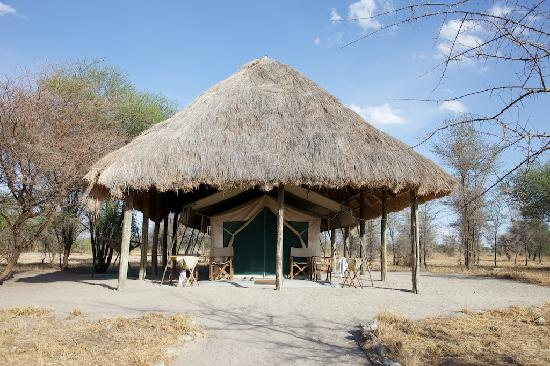 Whistling Thorn Tented Camp: the tents were roomy